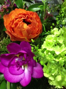 Vibrant Spring Flowers
